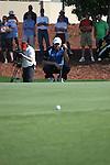 Dubai World Championship Golf. Earth Course,.Jumeirah Golf Estate, Dubai, U.A.E...Padraig Harrington lines up his putt on the 5th during the third round of the Dubai World Golf championship..Photo: Fran Caffrey/www.golffile.ie...