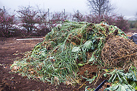 Green waste becoming compost at Singing Frogs Farm