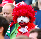 June 11th 2017, Dublin, Republic Ireland; 2018 World Cup qualifier, Republic of Ireland versus Austria;  An Austrian supporter in face paint and wig after full time