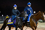 November 1, 2018: Midnight Bisou, trained by Steven M. Asmussen, exercises in preparation for the Breeders' Cup Distaff at Churchill Downs on November 1, 2018 in Louisville, Kentucky. Alex Evers/Eclipse Sportswire/CSM