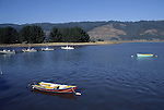 boats on Bolinas Lagoon