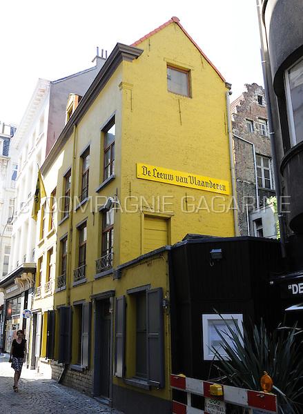 """Het Forum der Joodse Organisaties dient een klacht in tegen een Antwerps café dat op zijn gevel een nazistisch teken schilderde. Op de gevel van """"De Leeuw van Vlaanderen"""" wordt in een opschrift voor de letter """"s"""" een afwijkende typografie gebruikt, die volgens de joodse gemeenschap een duidelijk SS-teken vormt."""