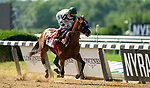 Gamine #1 wins the Longines Acorn Stakes at Belmont race track in Elmont, New York, USA, 20 June 2020. The Belmont is being run without fans due to coronavirus SARS-CoV-2 which causes the Covid-19 disease and while it has always been the third leg of the Triple Crown, due to Covid-19 it is, instead the first leg in 2020.