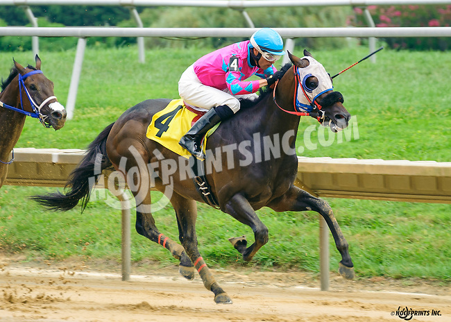 Booboothebarbarian winning at Delaware Park on 9/1/16