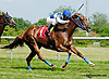 Jazz winning at Delaware Park on 6/22/13