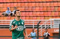 ATENÇÃO EDITOR: FOTO EMBARGADA PARA VEÍCULOS INTERNACIONAIS - SÃO PAULO, SP, 25 DE NOVEMBRO DE 2012 - CAMPEONATO BRASILEIRO - PALMEIRAS x ATLETICO GOIANIENSE: Correia durante partida Palmeiras x Atletico Goianiense, válida pela 37ª rodada do Campeonato Brasileiro no Estádio do Pacaembú. FOTO: LEVI BIANCO - BRAZIL PHOTO PRESS