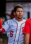 26 September 2018: Washington Nationals infielder Adrian Sanchez returns to the dugout after scoring in the second inning against the Miami Marlins at Nationals Park in Washington, DC. The Nationals defeated the visiting Marlins 9-3, closing out Washington's 2018 home season. Mandatory Credit: Ed Wolfstein Photo *** RAW (NEF) Image File Available ***