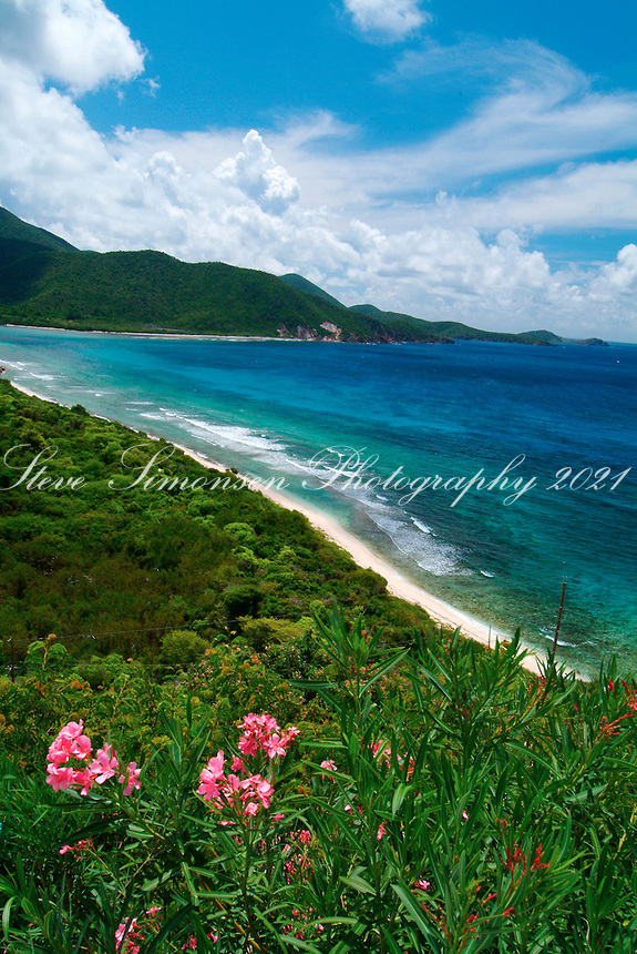 Reef Bay<br /> Virgin Islands National Park<br /> St. John, U.S. Virgin Islands