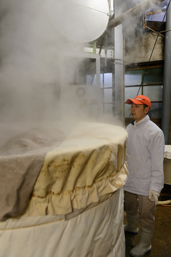 "Brewery working watching rice steaming. Tsuji Honten Sake, Katsuyama town, Okayama Prefecture, Japan, February 1, 2014. Tsuji Honten was founded in 1804 and has been at the cultural centre of the town of Katsuyama for over two centuries. 34-year-old Tsuji Soichiro is the 7th generation brewery owner. His elder sister, Tsuji Maiko, is the ""toji"" master brewer."