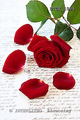 Gisela, Valentine, photos+++++,DTGK1894,#V#