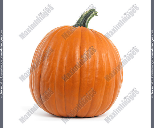 Large pumpkin isolated on white background
