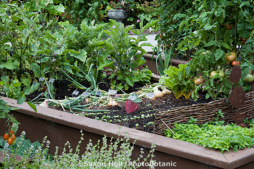 Organic raised bed vegetable garden with plant labels