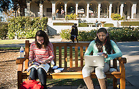 Occidental College students, from left, Katharine Tobler '17 and Dina Abdelaal '17 study for finals on Dec. 11, 2013 in the Academic Quad. (Photo by Marc Campos, Occidental College Photographer)