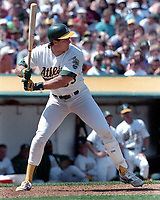 Oakland A's slugger Jose Canseco...(1989 photo/Ron Riesterer)