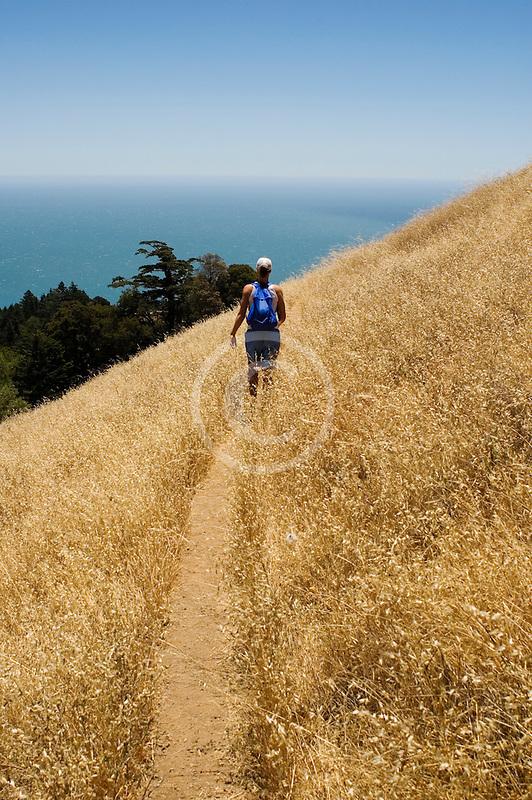 California, Marin County, Mount Tamalpais State Park, hiker, Coastal Trail