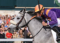 LEXINGTON, KY - April 08, 2017, #7 Sailor's Valentine and jockey Corey Lanerie win the 80th running of the Central Bank Ashland Grade 1 $500,000 for owner Semaphore Racing and Homewrecker Racing and trainer Eddie Kenneally at Keeneland Race Course.  Lexington, Kentucky. (Photo by Candice Chavez/Eclipse Sportswire/Getty Images)