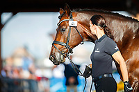 DEN-Betina Jaeger presents Mane Stream Belstaff during the Horse Inspection for Dressage. 2018 FEI World Equestrian Games Tryon. Tuesday 11 September. Copyright Photo: Libby Law Photography