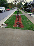 Residential rain garden Toledo with porous pavement