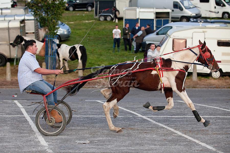2/10/2010.  A traveler rides his trotter at the Ballinasloe Horse Fair, Ballinasloe, County Galway, Ireland. Picture James Horan
