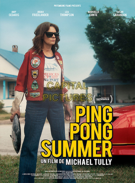 FRENCH POSTER ART<br /> in Ping Pong Summer (2014) <br /> *Filmstill - Editorial Use Only*<br /> CAP/NFS<br /> Image supplied by Capital Pictures