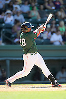 Designated hitter Carlos Mesa (28) of the Greenville Drive bats in a game against the Charleston RiverDogs on Sunday, June 28, 2015, at Fluor Field at the West End in Greenville, South Carolina. Charleston won, 12-9. (Tom Priddy/Four Seam Images)