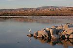 FB-S184   Back faded photo.  Salton Sea