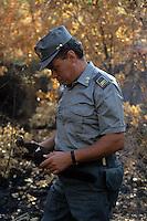 Forestali verificano i danni dopo un incendio..Forestry verify the damage after a fire....