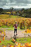 USA, California, Sonoma, Kit Paquin stands amidst a majestic vineyard landscape in the fall, Ravenswood winery and vineyard