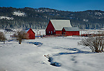 Idaho, New Meadows. Red barns in a snowy scene.