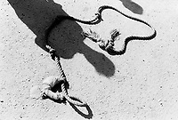 Iraq. Baghdad. Abu Ghraib prison. Hanging rope with slip knot from the death row laid on the ground. Looter's shadow. The Baghdad Central Prison, formerly known Abu Ghraib prison (Abu Ghuraib; also Abu Ghurayb, meaning 'father of the raven' or 'Place of Ravens' is in Abu Ghraib, an Iraqi city 32 km (20 mi) west of Baghdad. © 2003 Didier Ruef