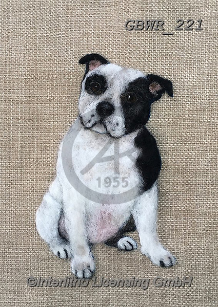 Simon, REALISTIC ANIMALS, REALISTISCHE TIERE, ANIMALES REALISTICOS, innovative, paintings+++++SharonS_StaffyBlackWhite,GBWR221,#a#, EVERYDAY dogs,breeds of dog,