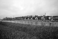 stretched peloton<br /> <br /> 2014 Milano - San Remo