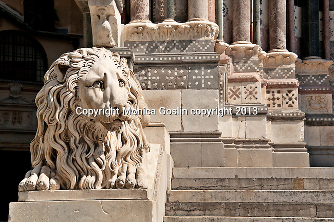 One of the marble lions that flanks the stairs of the St Lawrence Cathedral in Genoa, Italy