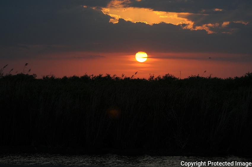 Florida Everglades Sunset captured at Arthur Marshall Loxahatchee Preserve, Boynton Beach, Florida.