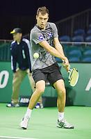 11-02-13, Tennis, Rotterdam, ABNAMROWTT, Victor Hanescu