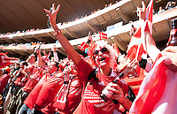 Denmark fans cheer during the first half of the FIFA World Cup first round match between Holland and Denmark at Soccer City in Johannesburg, South Africa on Friday, June 11, 2010.