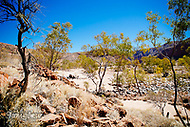 Image Ref: CA536<br />