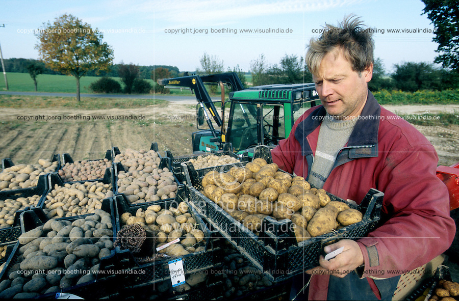 GERMANY Barum, organic potato farming at Ellenberg Bioland farm / DEUTSCHLAND Bioland Hof Ellenberg in Barum, Anbau von alten Kartoffelsorten und Erhalt der Sorte Linda, Landwirt Karsten Ellenberg