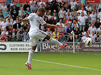 Saturday, 01 September 2012<br /> Pictured: Wayne Routledge of Swansea equalises for his team.<br /> Re: Barclays Premier League, Swansea City FC v Sunderland at the Liberty Stadium, south Wales.