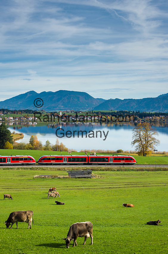 Germany, Bavaria, Upper Swabia, East-Allgaeu, Fuessen, district Hopfen at Hopfen Lake: at background Allgaeu Alps | Deutschland, Bayern, Oberschwaben, Ost-Allgaeu, Fuessen, Stadteil Hopfen am See: der Regional-Express auf dem Weg nach Fuessen, im Hintergrund die Allgaeuer Alpen