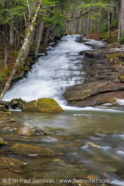 Dearth Brook Falls in Landaff, New Hampshire during the spring months. These falls are located on Dearth Brook on the side of the Cobble Hill Trail.