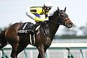 Horse Racing : Chukyo Racecourse