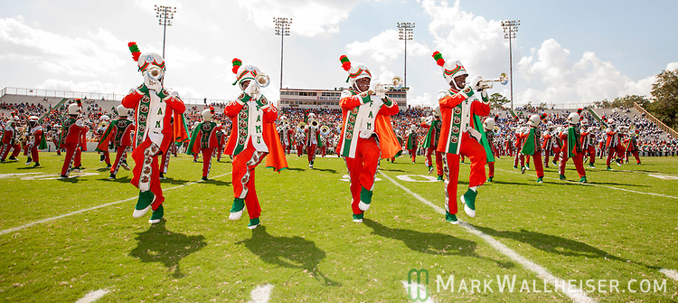 TALLAHASSEE, FL - SEPTEMBER 7, 2013:   <br /> The FAMU Marching 100 band takes to the field for their first home performance when the Florida A&amp;M Rattlers played the Tennessee State Tigers in NCAA football.   The temperature was 110 degrees on the filed.