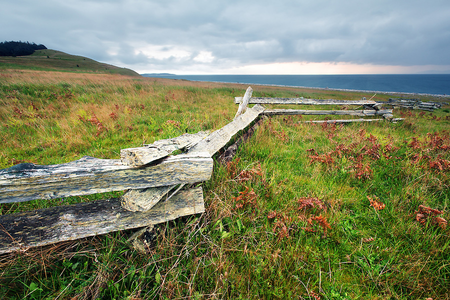Fence through prairie, American Camp, San Juan Island National Historic Park, San Juan Island, Washington, USA