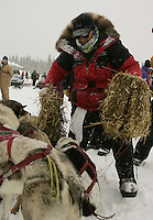 Doug Swingley makes a bed of straw for his dogs at the Nikolai checkpoint