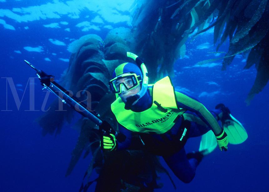 Skin diver spearfishing.Anacapa Island, CA.