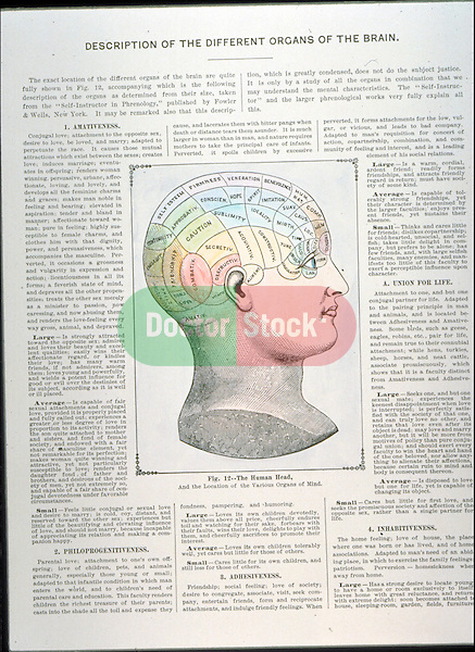 historical illustration of human head depicting phrenology, the special functions of the several parts of the brain, or off the supposed connection between the various faculties of the mind and particular organs in the brain
