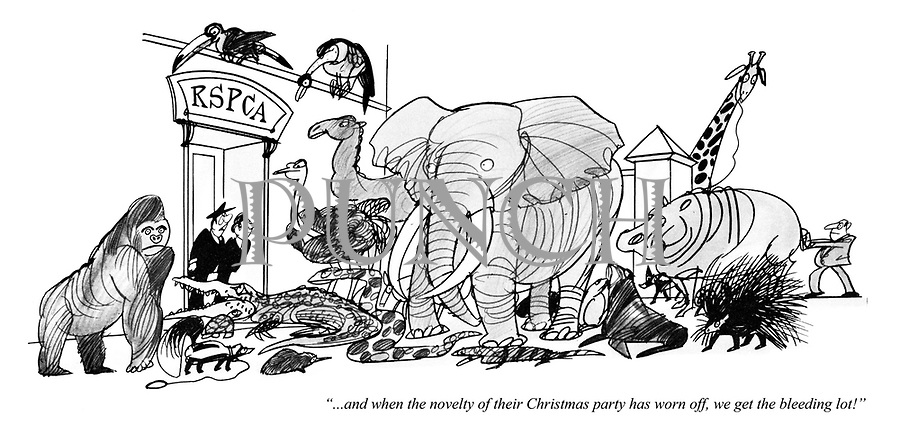 """""""...and when the novelty of their Christmas party has worn off, we get the bleeding lot!"""""""