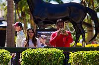 HALLANDALE BEACH, FL - MARCH 18:  Scenes from Gulfstream at Gulfstream Park, Hallandale Beach, FL. (Photo by Arron Haggart/Eclipse Sportswire/Getty Images)