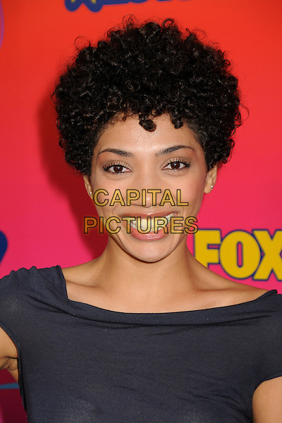 JASIKA NICOLE.FOX 2010 Summer TCA All-Star Party held at Pacific Park on the Santa Monica Pier, Santa Monica, California, USA..August 2nd, 2010.headshot portrait smiling grey gray top  .CAP/ADM/BP.©Byron Purvis/AdMedia/Capital Pictures.
